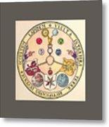 Rosicrucian Rose Metal Print