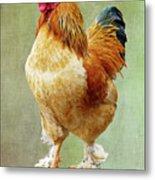 Otis T Rooster Metal Print
