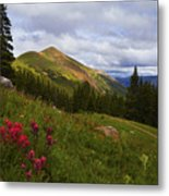 Rosy Paintbrushes Metal Print by Barbara Schultheis