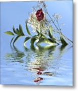 Rosy Reflection  Metal Print