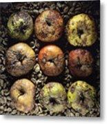 Rotten Apples Metal Print