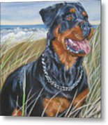 Rottweiler At The Beach Metal Print