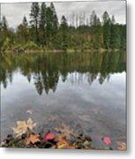 Round Lake At Lacamas Park In Fall Metal Print