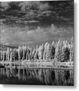 Round Lake State Park 2 Metal Print
