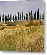 Row Of Cypress Trees, Tuscany Metal Print