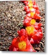 Row Of Flowers Metal Print