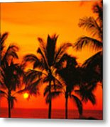 Row Of Palms Metal Print
