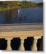 Rowinfg Towards The Weeks Bridge Charles River Harvard Square Cambridge Ma Metal Print