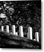 Rows Of Honor Metal Print