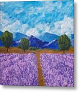 Rows Of Lavender In Provence Metal Print