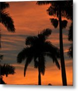 Royal Palms Metal Print