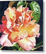 Royal Rose Metal Print by David Lloyd Glover