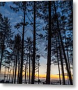 Ruby Beach Through The Trees Metal Print