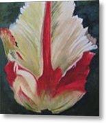 Ruffled Tulip  Metal Print