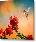 Rufous Dream Metal Print