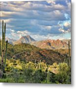 Rugged Beauty Metal Print