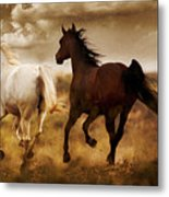 Run For The Hills Metal Print