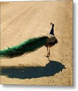 Running Away Metal Print