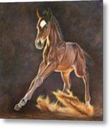 Running Foal Metal Print