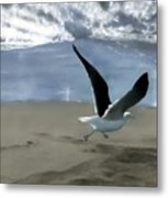 Running Gull Metal Print