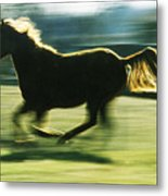 Running Horse Backlit Metal Print