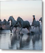 Running Into The Sunset Metal Print