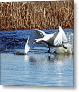 Running On Water I Metal Print