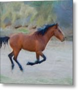 Running Wild Stallion Metal Print