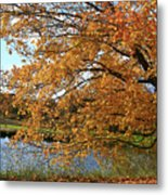 Rural Autumn Country Beauty Metal Print