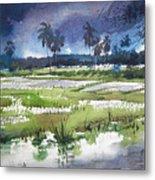 Rural Bengal 5 Metal Print