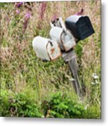 Rural Delivery No 4 Metal Print
