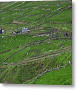Rural Landscape On Dingle Peninsula Metal Print