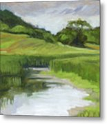 Rural Marsh Metal Print
