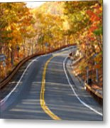 Rural Road Running Along The Maple Trees In Autumn 2 Metal Print