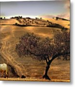 Rural Spain View Metal Print