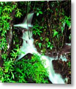 Rushing Stream El Yunque National Forest Mirror Image Metal Print