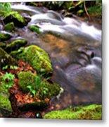 Rushing Stream Monongahela National Forest Metal Print
