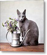 Russian Blue 02 Metal Print by Nailia Schwarz