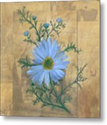 Russias Chamomile Metal Print