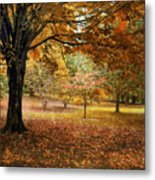 Rustic Autumn  Metal Print