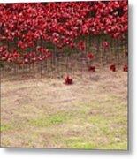 Rustic Poppy Garden Metal Print