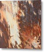 Rusty Drum #1 Metal Print