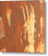 Rusty Drum #2 Metal Print