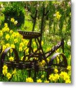 Rusty Plow In Daffodils  Metal Print