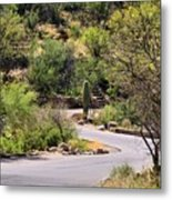 Sabino Canyon Road Metal Print