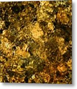 Sabino Creek Bottom Metal Print