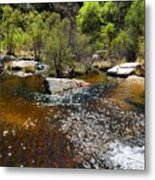 Sabino Creek Metal Print