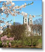 Sacred Heart And Branch Brook Cherry Blossoms  Metal Print