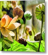 Sacred Lotus Painted Series Metal Print