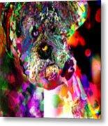 Sad Dog Metal Print by James Thomas